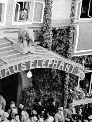http://www.weimar-im-ns.de/images_orte/elephant.jpg